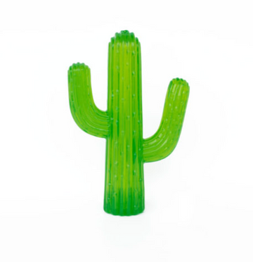 Cactus Chewing Toy
