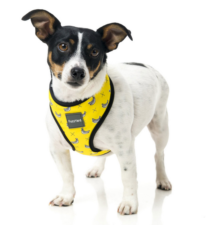 Bananas Dog Harness