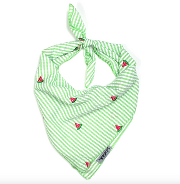 Green Stripe Watermelon Tie Bandana