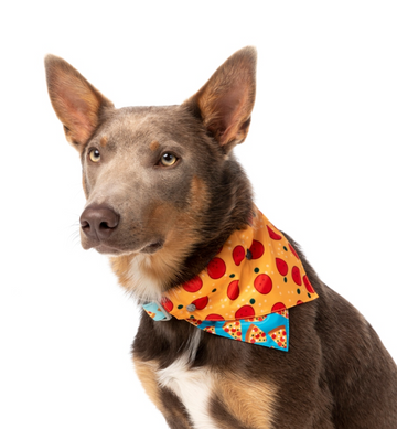 Pizza Lyf - Reversible Collar Bandana with Studs