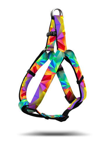 Harness - Polygon Collection