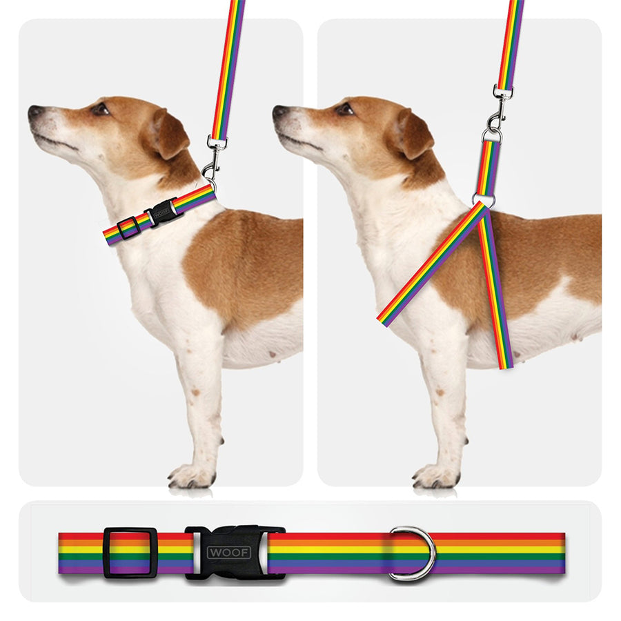 Collar - Pride Collection