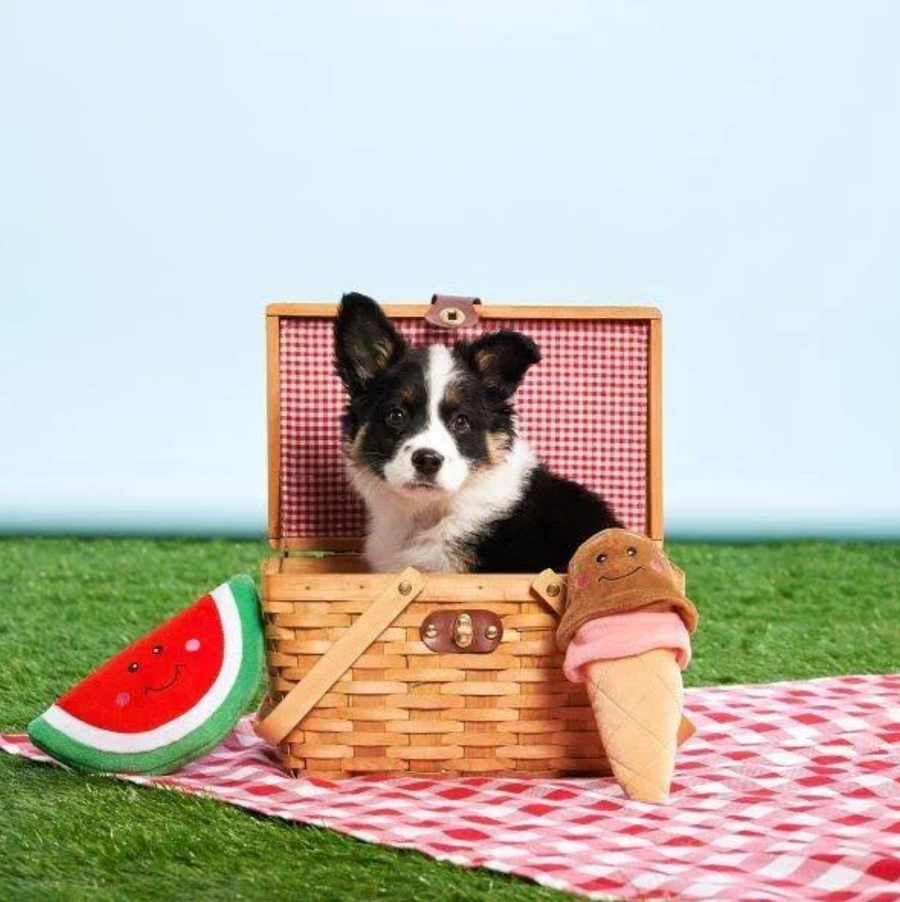 NomNomz - Watermelon Dog ToyPlush