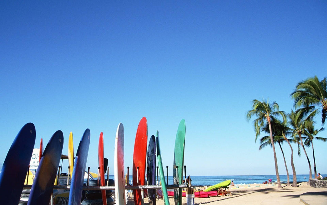 Malibu Paddle Surf Equipment Rentals