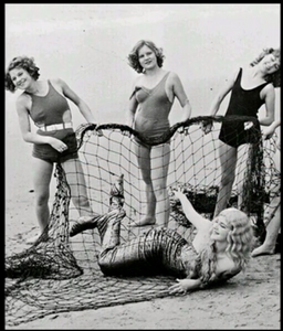 1920s Vintage VENICE Beach Surf Girls Mermaid Sun Bathing Photo Repro