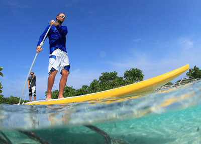 Private Surf or Sup Lesson