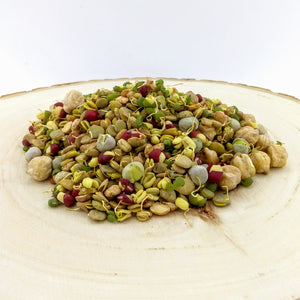Baby Sprouts - Bean Salad