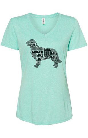Custom Ladies' V neck T shirt
