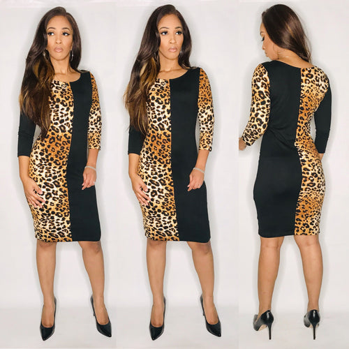 Too Fierce Dress-Dresses-Fierce Impression Boutique