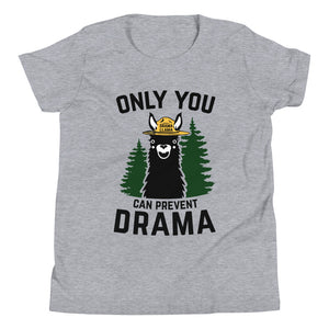 Youth Short Sleeve Bella Tee - Only You Can Prevent Drama Llama Smokey Bear Parody