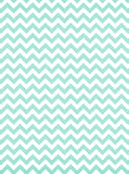 Chevron Mint