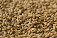 Gladfield Munich Malt