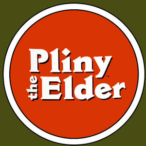 Pliny the Elder - 8.0% ABV 22L Kit