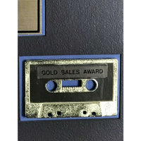 Stevie Ray Vaughan In Step RIAA Gold LP Award