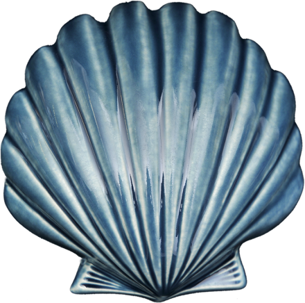 Wall Art Ceramic Scallop - Small