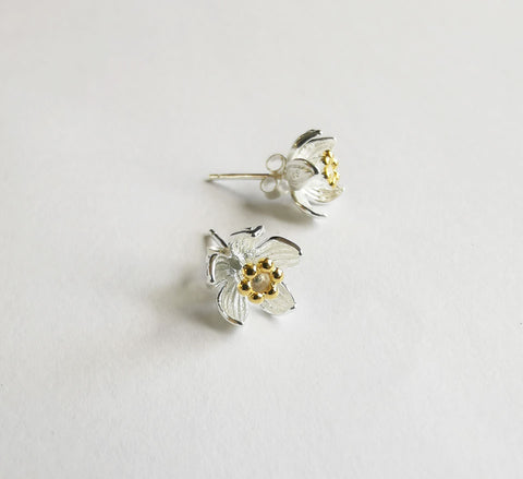 Manuka Flower with Gold Stamen Studs