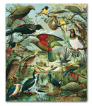 New Zealand Native Birds - Lens Cloth