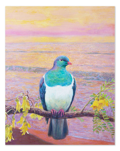 Peaceful Kereru - Original Oil Painting