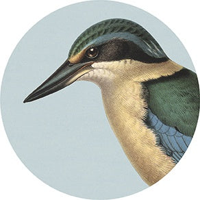 Art spot - Hushed Green Kingfisher