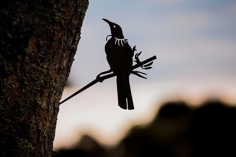 Metal Bird - TUI