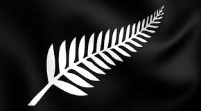 New-Zealand-Silver-fern-bracelet-inspiration