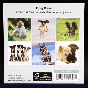Dog Days - Notecards