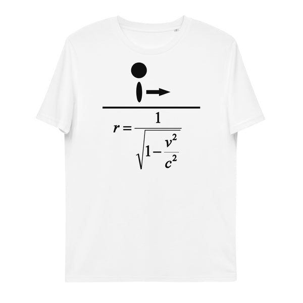 Lorentz Factor Unisex Organic Cotton T-Shirt | Simple Mindset