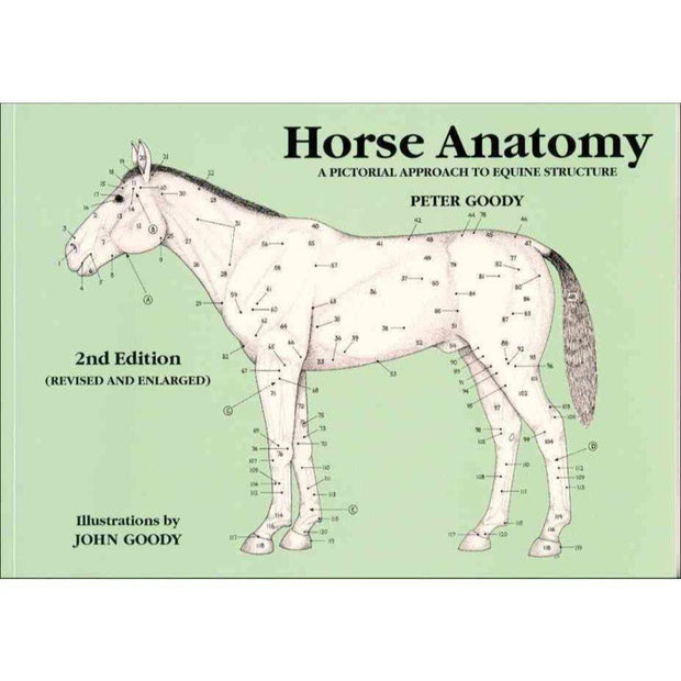 Horse Anatomy: A Pictorial Approach to Equine Structure
