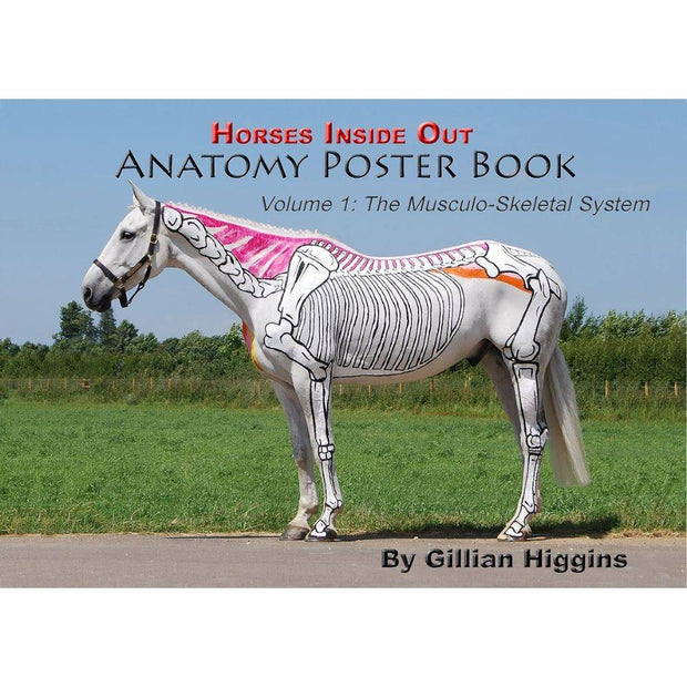 Horses Inside Out Anatomy Poster Book vol 1
