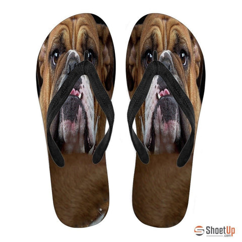 Bulldog Flip Flops For Women-Free Shipping