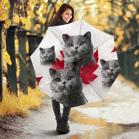British Shorthair Cat Print Umbrellas