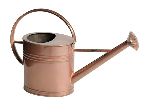Zinc Copper Watering Can Oval 7L