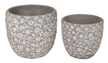 Ciao Daisy Egg Pot Grey S2 D26/32H24/29