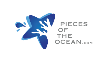 Pieces of the Ocean