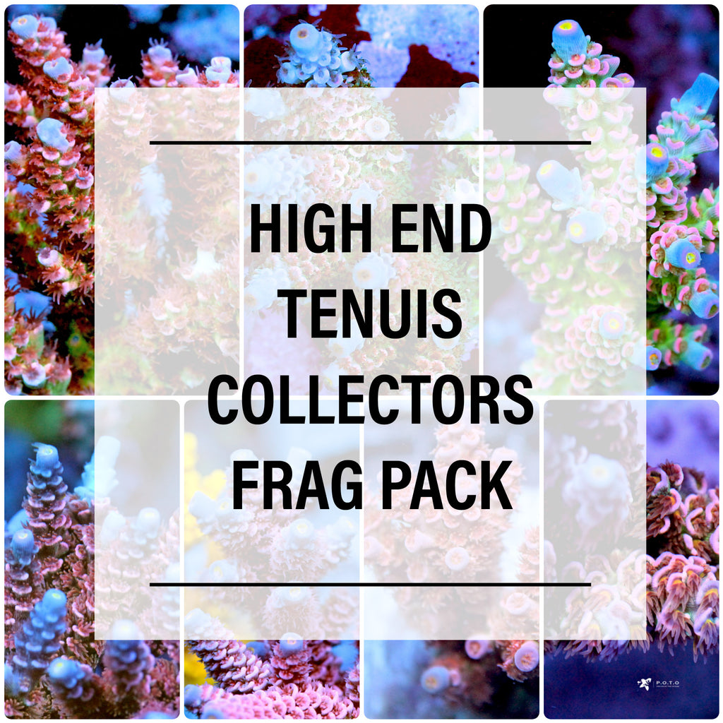 Frag Pack: Tenuis Collector