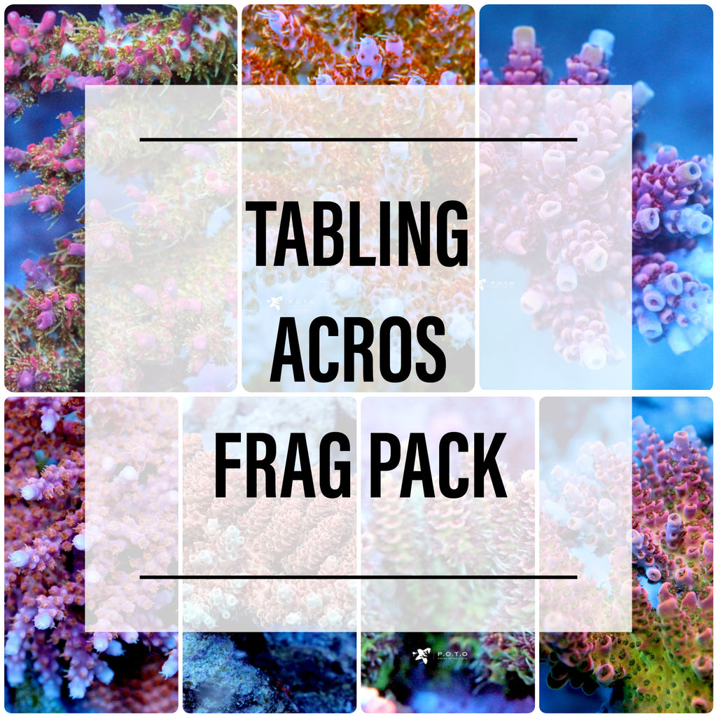 Frag Pack: Tabling Acros Only