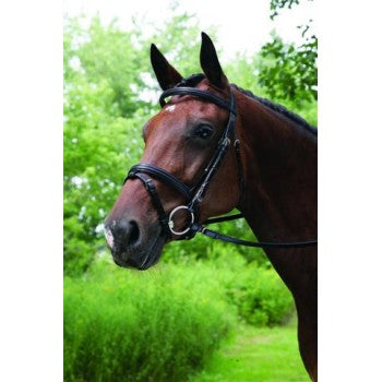VESPUCCI DOUBLE RAISED SNAFFLE BRIDLE WITH FLASH & SINGLE CROWN