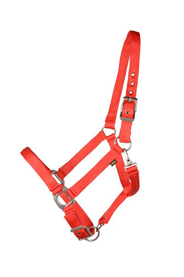 SIERRA CUSHION WEB HALTER