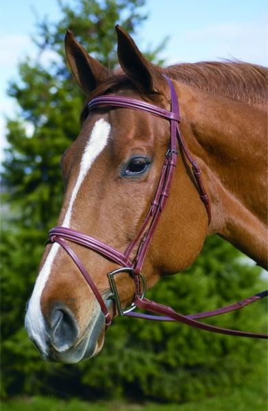 HENRI DE RIVEL PRO PADDED SQUARE RAISED BRIDLE