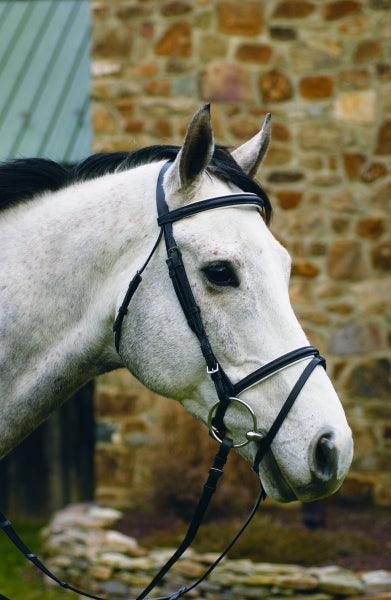 HENRI DE RIVEL DRESSAGE BRIDLE WITH WHITE PADDING