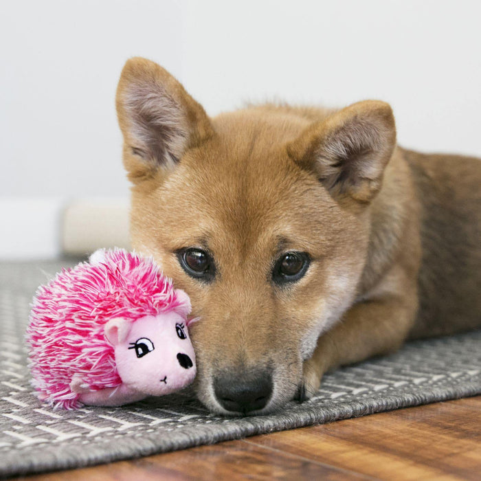 KONG COMFORT HEDGEHUG PUPPY