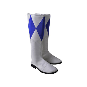 Blue Ranger Cosplay Boots Mighty Morphin Power Rangers Cosplay Shoes