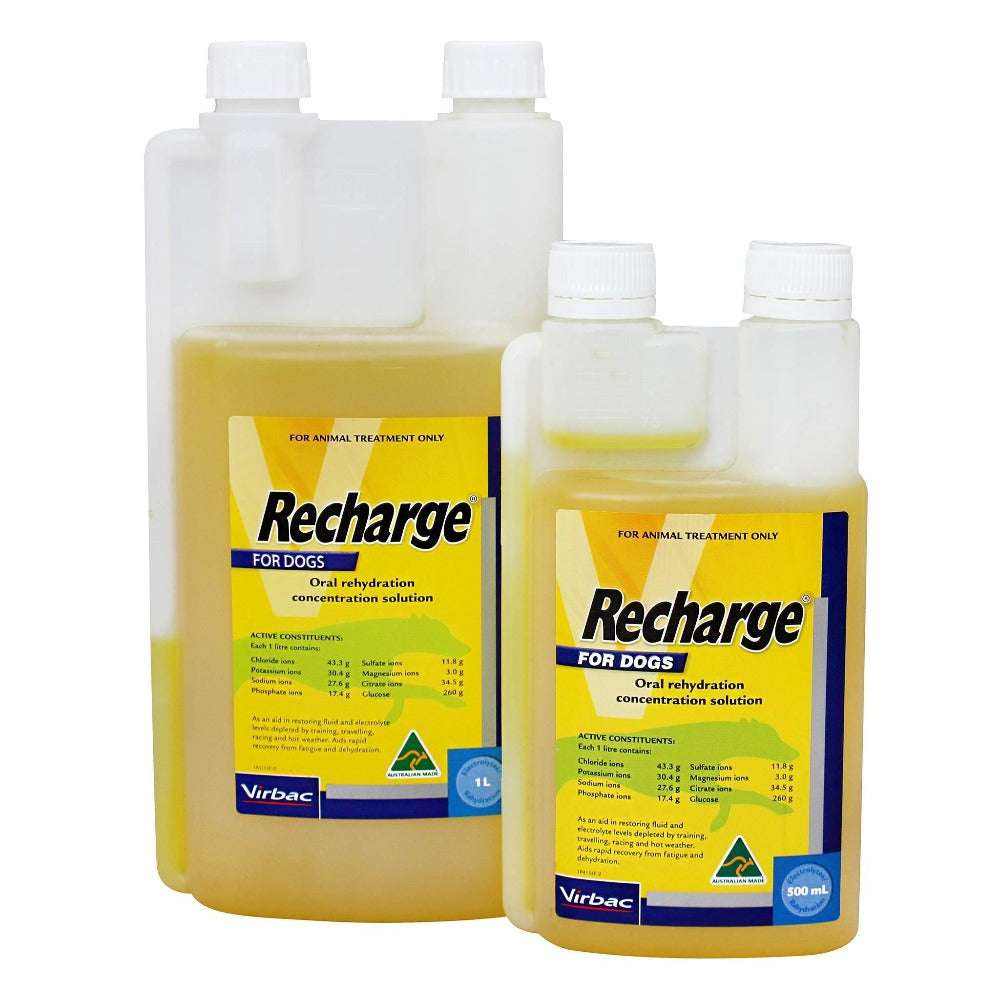 Virbac Recharge for Dogs 500ml