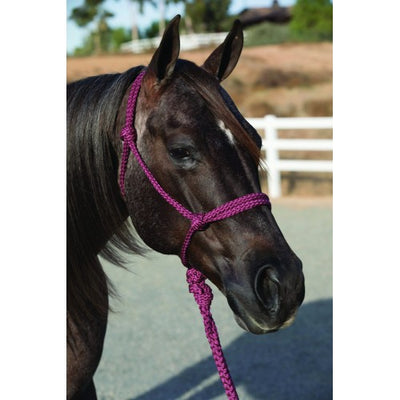 Professionals Choice Rope Halter w/ 10ft Lead
