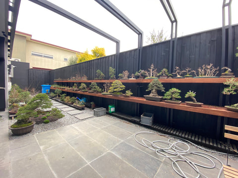 The Hakuju-En Bonsai Nursery is Now Open!