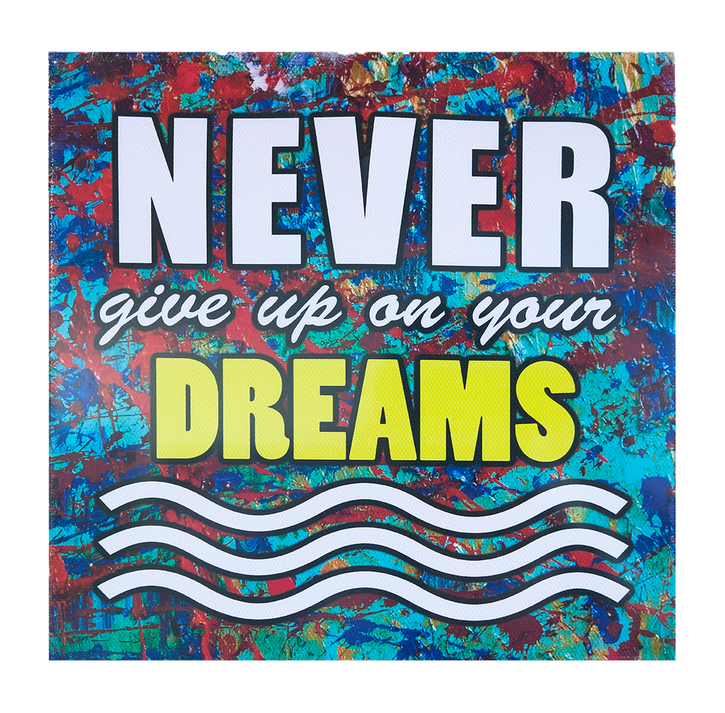 Inspirational Canvas Wall Art: Never Give Up...