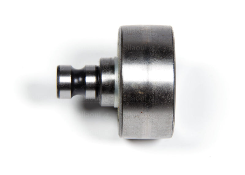 Product photo F-231417.04.BSR Tightening Roller Ina, Spannrolle Ina