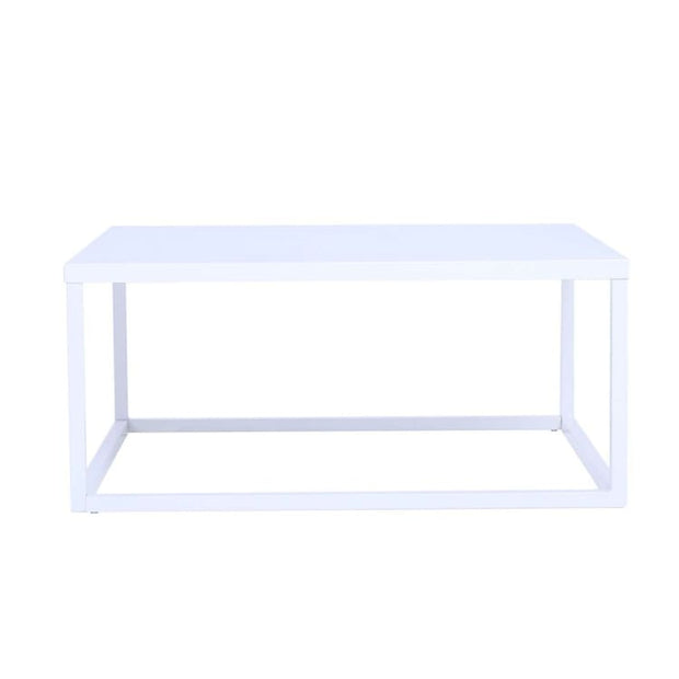 Daichi Steel Coffee Table, Matt White - Home And Style