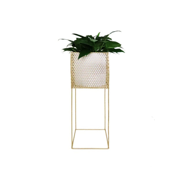 Dayo Brass Free Standing Planter - Home And Style