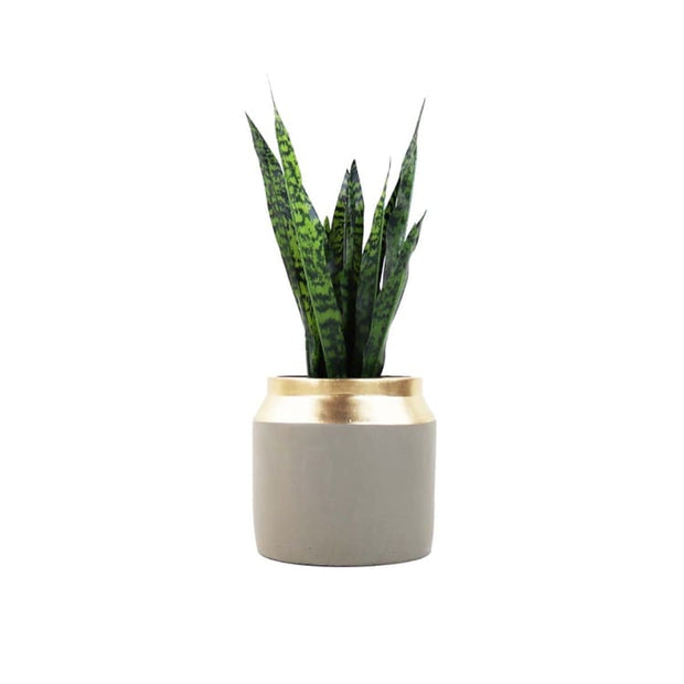 Heku Flowerpot - Home And Style